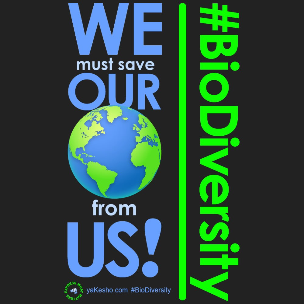 We Must Save Our World from Us! Design