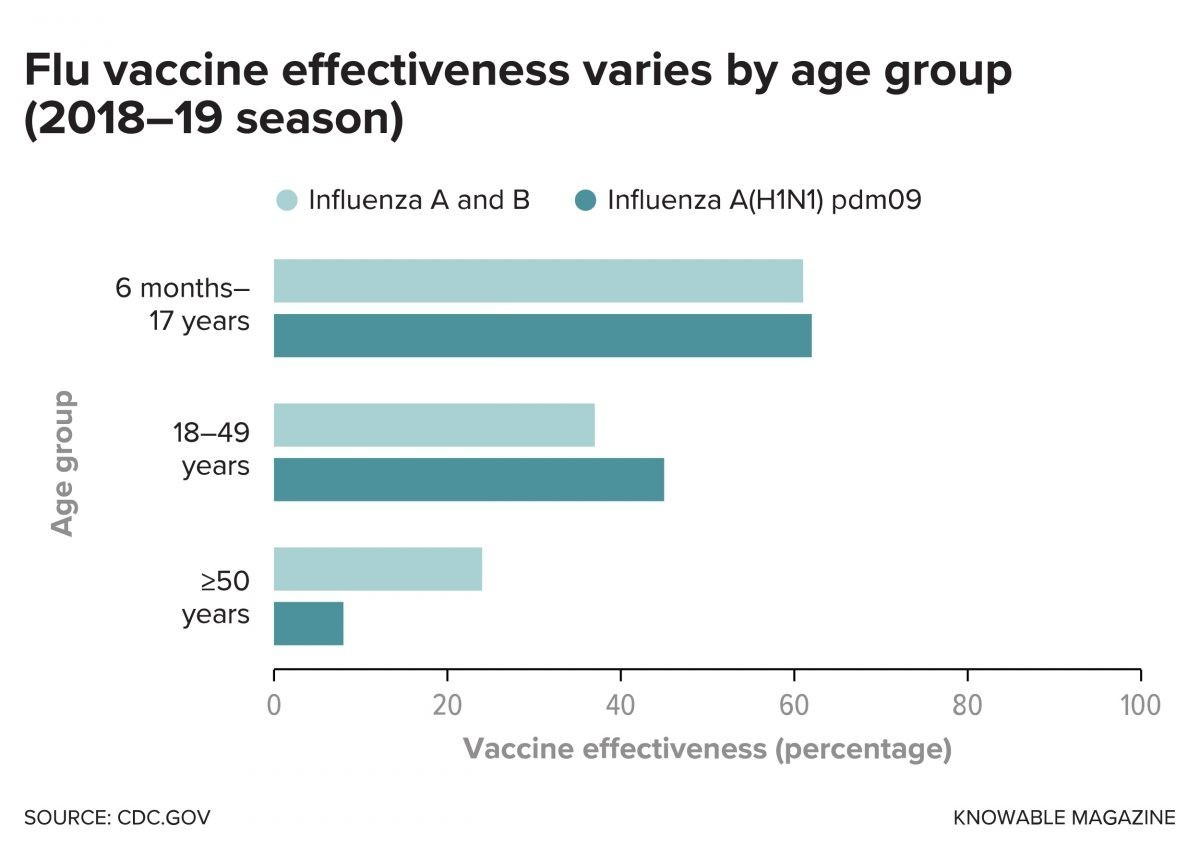 Flu Vaccine Effectiveness Varies By Age Group 1 1