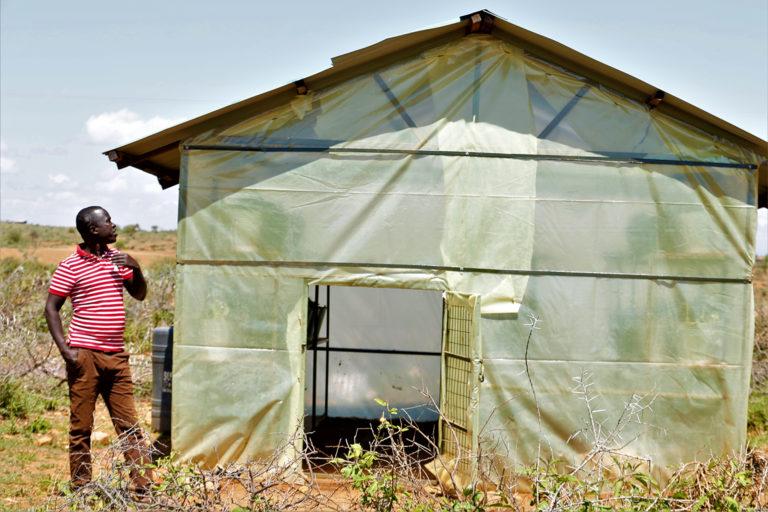 Francis Merinyi Biocontrol Insects Kenya